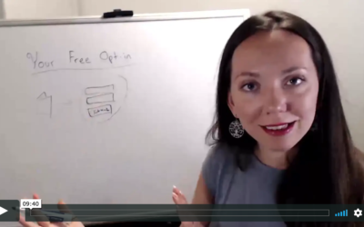 Why you want a freebie on your website